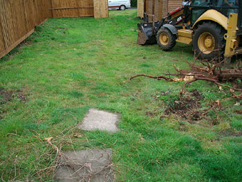 Garden Landscaping Before During And After Transformation